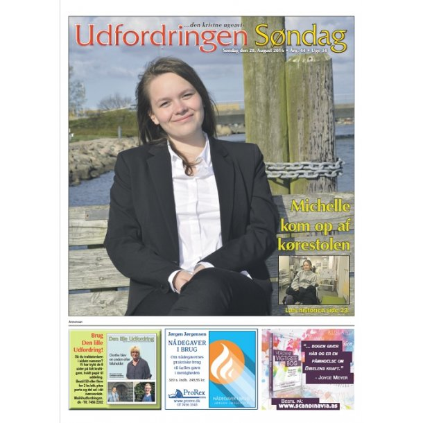 Udfordringen - med avisbud 12 mdr. - Studietilbud (husk: oplys studieperiode)